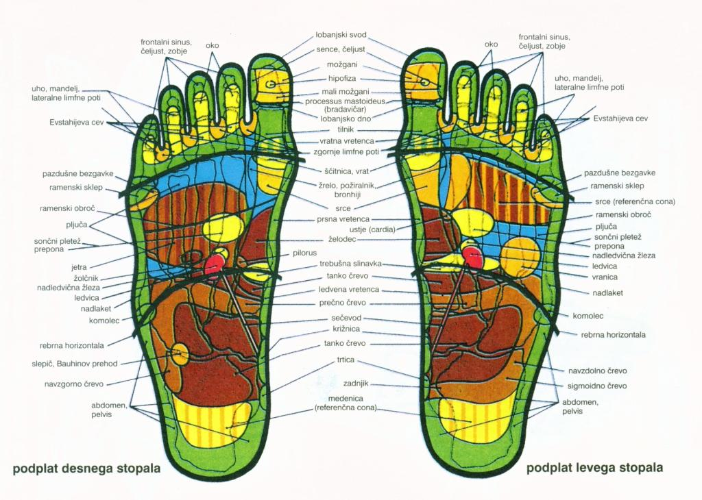 Refleksoterapija stopal, Hanne Marquardt